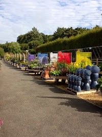 Unusual Dummer A Wyevale Garden Centre In Basingstoke Hampshire Rg Dj With Extraordinary Dummer A Wyevale Garden Centre  Image  With Attractive Garden Edge Fencing Also Famous Chinese Gardens In Addition Garden Designs With Sleepers And Garden Irrigation Supplies As Well As Royal Botanic Gardens Edinburgh Additionally Garden Centres Near Reading From Gardenerscentralcouk With   Extraordinary Dummer A Wyevale Garden Centre In Basingstoke Hampshire Rg Dj With Attractive Dummer A Wyevale Garden Centre  Image  And Unusual Garden Edge Fencing Also Famous Chinese Gardens In Addition Garden Designs With Sleepers From Gardenerscentralcouk